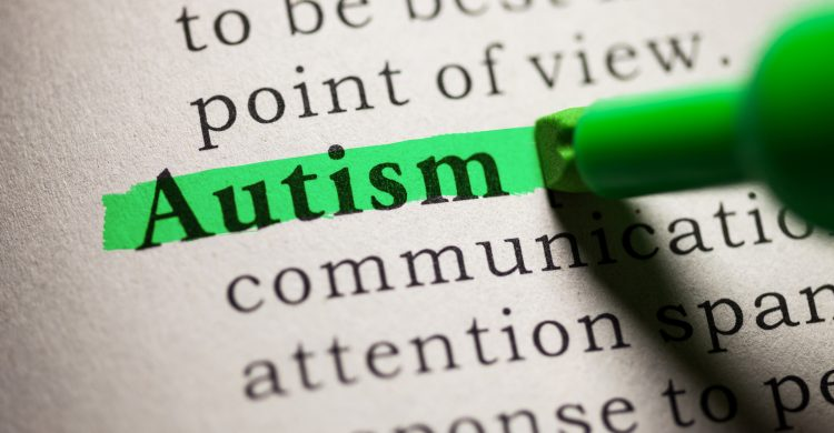 Fake Dictionary, definition of the word Autism.